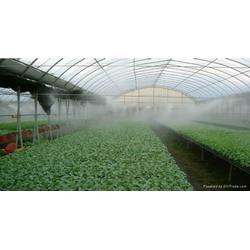 食用菌栽培蔬菜苗圃温室大棚喷雾降温加湿喷药防疫雾机