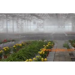 花卉园艺高压喷雾加湿设备
