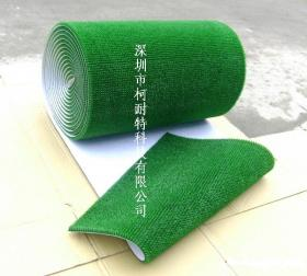 精美金毯--淘金草