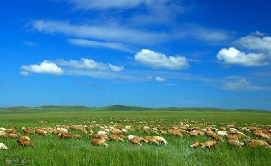 去内蒙古大草原旅游 内蒙古大兴安岭岩画发现罕见 性崇拜 图案