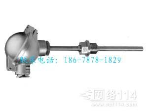 西门子浸入式温度传感器,QAE3075.016
