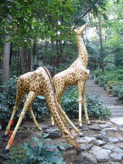 玻璃钢长颈鹿雕塑-动物雕塑