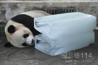 长期零售南昌市户外室内降温冰