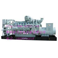 星光燃气发电机组产品介绍H