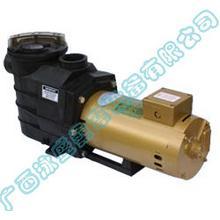 泳池设备-比美塑料泵(2)