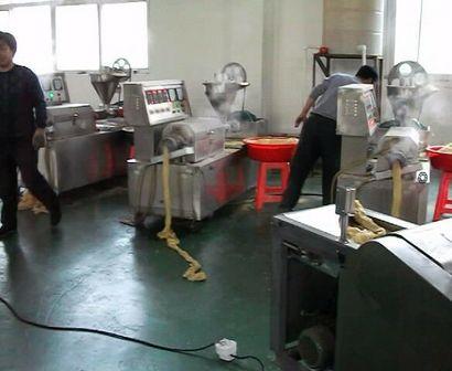 山东定陶豪华型新式全自动人造肉机生产厂家