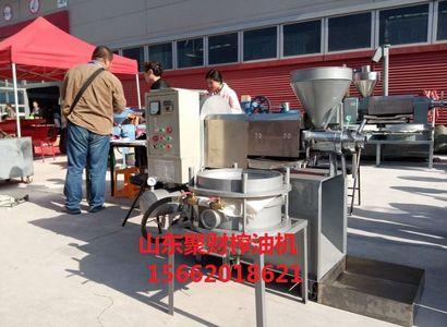 山东巨野哪有卖小型商用全自动榨油机设备的