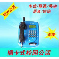 供应PTW515CDMA无线插卡话机铁壳
