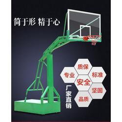 广西南宁移动式篮球架标准型比赛专用篮球架《飞跃体育专营店》