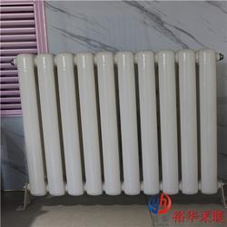 SQGZ214低碳钢双柱钢管暖气片|钢二柱钢制柱式暖气片散热